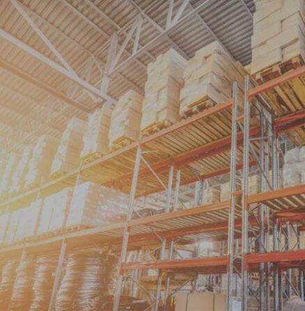 Steute B2B Shop E-Commerce